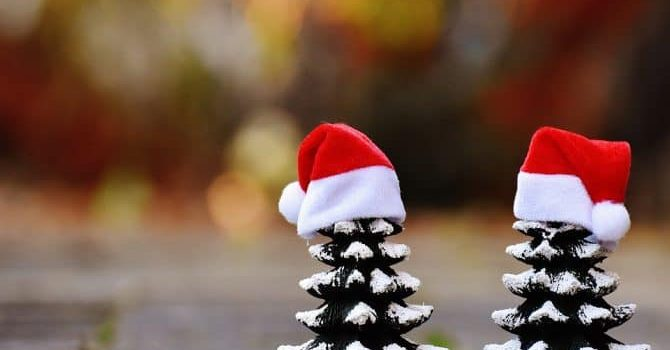BGZ wenst u fijne kerstdagen.